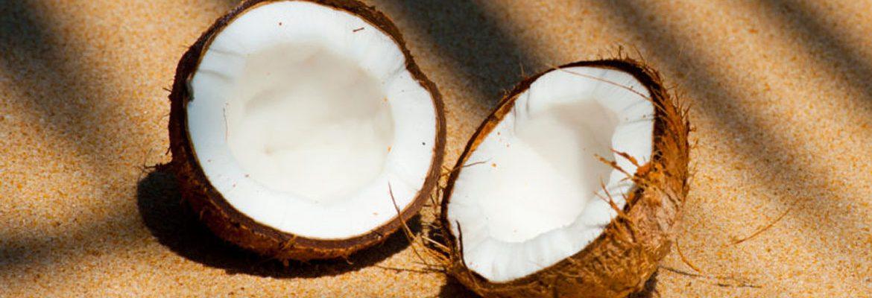 indo coconut sugar
